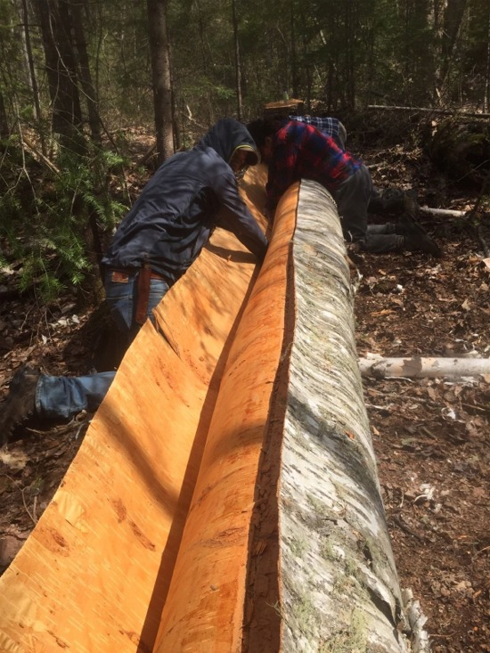 Kayarchy Building A Birchbark Canoe