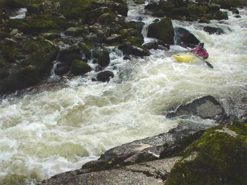 Kayak in white water