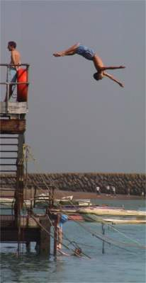 Children diving into harbour