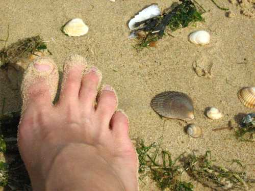 Foot on sandy beach