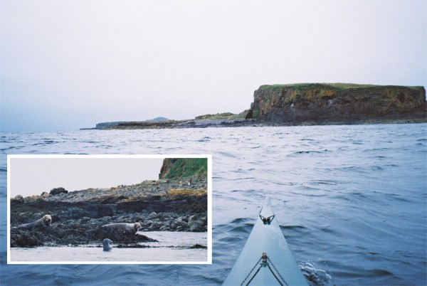 Sea kayak, island and seals